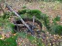 Einen vergessenen Wunschbrunnen mitten im Wald!