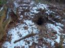 …¦direkt neben dem Fuchsbau!! Frische Erde vor dem Bau zeigt, dass er wohl bewohnt ist!