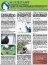 "Serie ""Natur erleben… Dezember 2012 Wurzeltrapp"