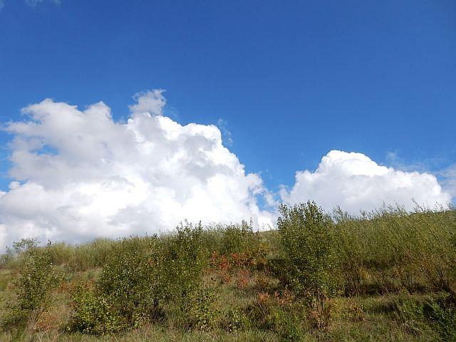 Wolkentürme über dem buschigen Hang des Schneckenbergs